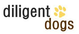 Diligent Dogs, Llc - Charlottesville, VA 22902 - (434)260-0641 | ShowMeLocal.com