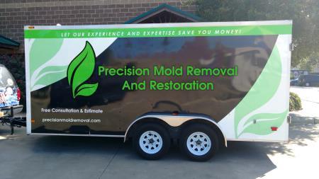 Precision Mold Removal Houston