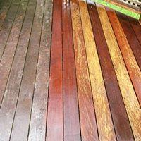 Custom Deck & Fence Staining