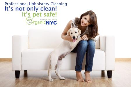 Organic NYC Services