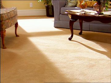 Sorrento Valley Speedy Carpet Cleaners - San Diego, CA 92121 - (858)207-6004 | ShowMeLocal.com