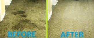 Carpet Cleaning Conroe