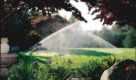 Narciso Irrigation Commercial And Residential Houston