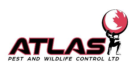 Atlas Pest & Wildlife Control Ltd - Surrey, BC V3S 2P3 - (604)503-5444 | ShowMeLocal.com
