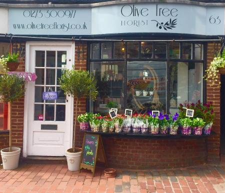 Olive Tree Florist - Brighton, East Sussex  BN2 7HE - 01273 300977 | ShowMeLocal.com