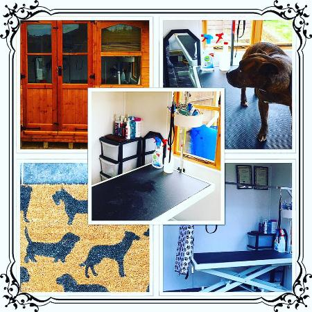 My Nutri Pet Dog Grooming and Doggie Day Care & Overnight Home Boarding - Stoke On Trent, Staffordshire ST3 5JX - 07534 310193 | ShowMeLocal.com