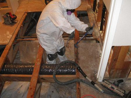 GTA Mold Removal Mississauga - Mississauga, ON L5B 1M5 - (647)632-8648 | ShowMeLocal.com