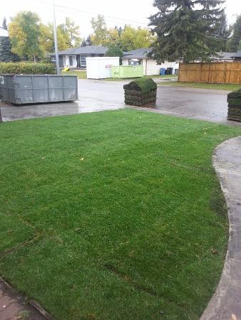 Neatlawns Landscaping - Airdrie, AB T4B 0K5 - (587)998-7179 | ShowMeLocal.com
