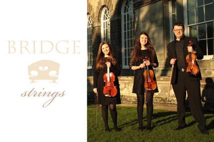 Bridge Strings - Bridgend, Mid Glamorgan CF31 4TU - 07786 625580 | ShowMeLocal.com