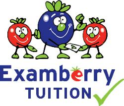 Examberry Tuition Ltd - Ealing, London W5 2RS - 07733 554447 | ShowMeLocal.com