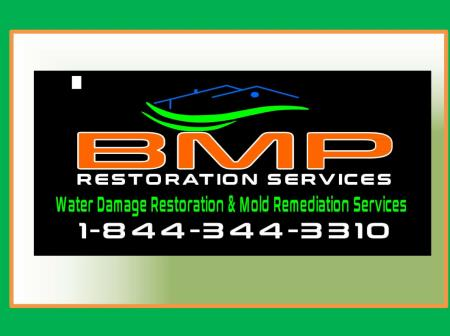 BMP Restoration Services- Mold and Water Damage