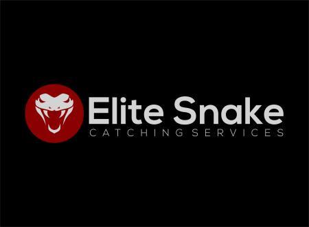 Brisbane Snake Catchers - Wynnum West, QLD 4178 - 0434 146 109 | ShowMeLocal.com