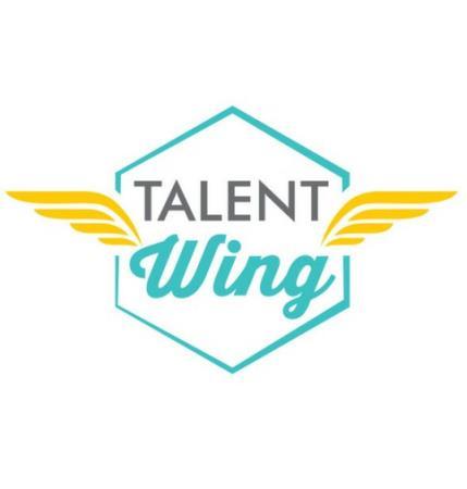 Talent Wing Ltd - Newport, Gwent NP18 2NT - 07730 870160   ShowMeLocal.com