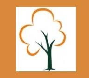 Head4heights Tree Surgery - Billingshurst, West Sussex RH14 9DN - 07557 886527 | ShowMeLocal.com