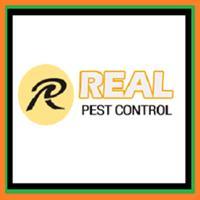Real Pest Control - Melbourne, VIC 3000 - 1300 660 487 | ShowMeLocal.com