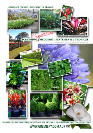 Greenery - The Garden Nursery - North Maclean, QLD 4280 - 0414 779 910 | ShowMeLocal.com
