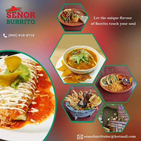 Senor Burrito Inc - Mississauga, ON L5K 2K8 - (905)916-2712 | ShowMeLocal.com
