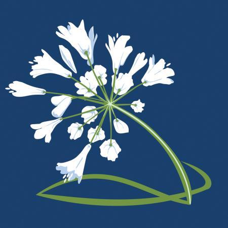 Ombelle Fleuriste - Saint-Basile-Le-Grand, QC J3N 1R1 - (450)300-2793   ShowMeLocal.com