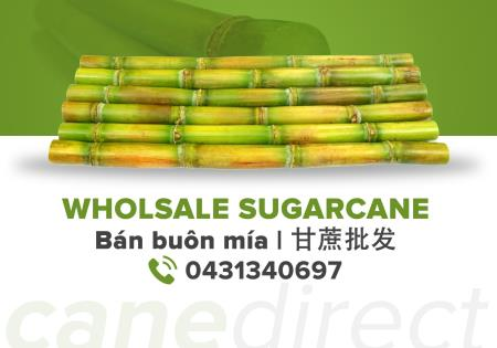 Cane Direct