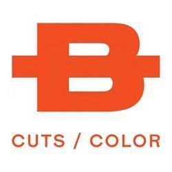 Bishops Cuts / Color - Simpsonville, SC 29681 - (864)203-5577 | ShowMeLocal.com