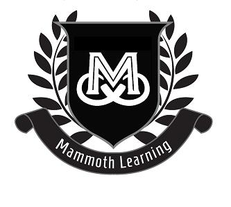 Mammoth Learning - Liverpool, NSW 2170 - 0432 710 126 | ShowMeLocal.com