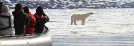 Polar Holidays - Bellevue, WA 98004 - (800)240-2648 | ShowMeLocal.com