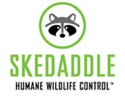 Skedaddle Humane Wildlife Control Sudbury - Sudbury, ON P3E 2G7 - (705)470-6102 | ShowMeLocal.com