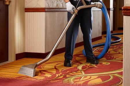 Cleaning My Carpet Services - Sarasota, FL 34243 - (941)900-7844   ShowMeLocal.com