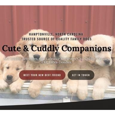 Cute & Cuddly Companions - Hamptonville, NC 27020 - (336)468-2671 | ShowMeLocal.com