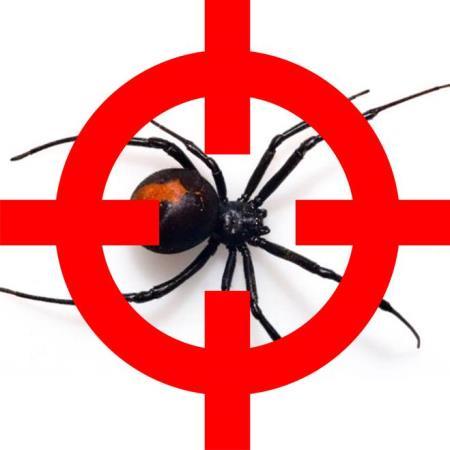 Pest Control Southside - Loganlea, QLD 4131 - 1300 767 770 | ShowMeLocal.com