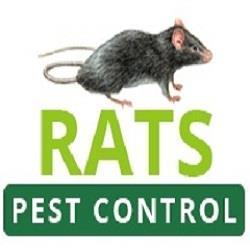 Rats Pest Control Perth - Perth, WA 6000 - (08) 6244 4278 | ShowMeLocal.com