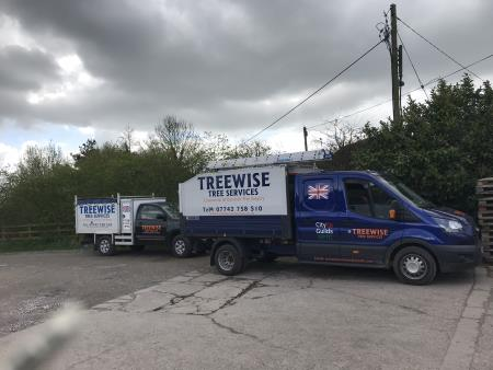 Treewise Tree Services - Sutton Coldfield, West Midlands B76 9PJ - 07742 758510 | ShowMeLocal.com