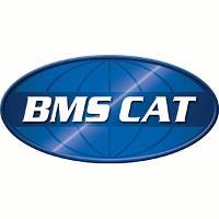 BMS Cat - Norcross, GA 30071 - (770)614-3248 | ShowMeLocal.com