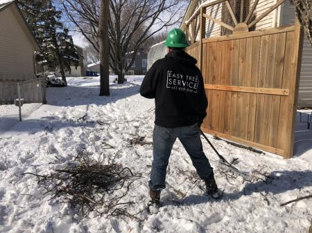 Easy Tree Service Lakeville (651)855-8189