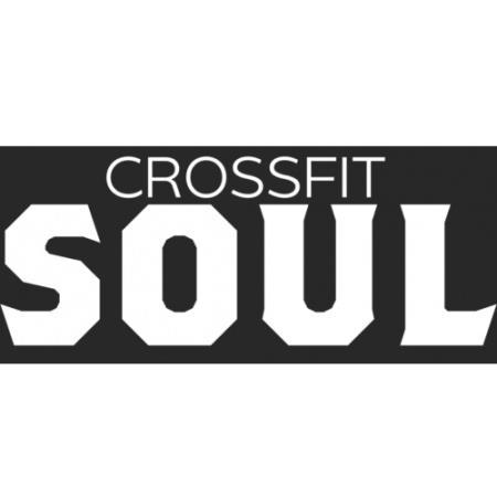 Crossfit Soul Miami - Miami, FL 33155 - (305)668-8289   ShowMeLocal.com
