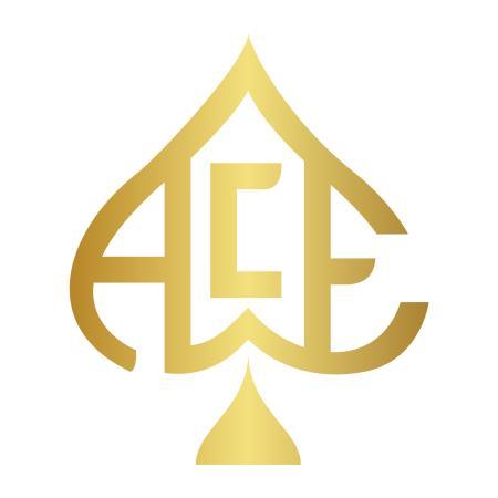 Ace Management Group