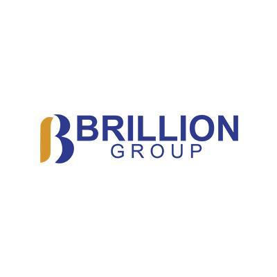 Brillion Group - Milton, ON L9T 7W6 - (905)636-1667   ShowMeLocal.com
