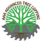 Tree Removal - AAA Advanced Tree Lopping