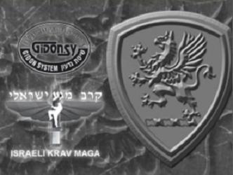 Buffalo Grove Martial Arts - Buffalo Grove, IL 60089 - (847)215-8333 | ShowMeLocal.com