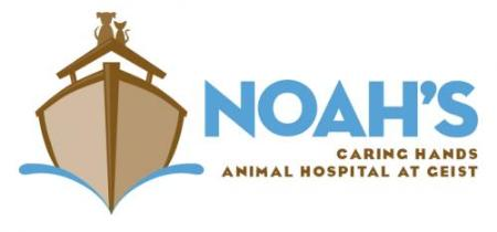 Noah's Caring Hands Animal Hospital at Geist - Indianapolis, IN 46236 - (317)823-6922 | ShowMeLocal.com
