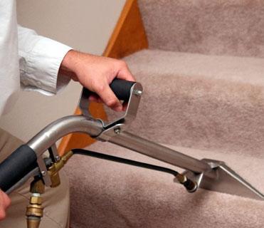 Manhattan Local Carpet Cleaners - New York, NY 10019 - (347)674-8184 | ShowMeLocal.com
