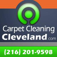 Carpet Cleaning Cleveland - Cleveland, OH 44113 - (216)201-9598   ShowMeLocal.com