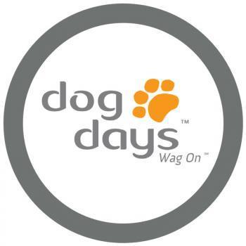 Dog Days Daycare & Boarding - Saint Paul, MN 55105-1881 - (651)699-3905   ShowMeLocal.com
