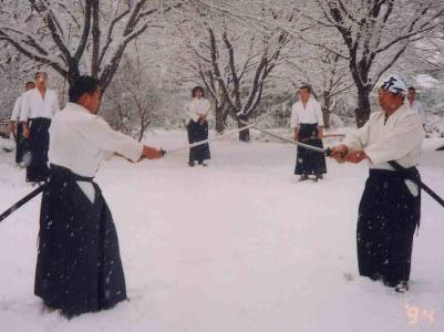 Aikido White Plains - White Plains, NY 10607 - (914)648-0492   ShowMeLocal.com