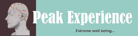 Peak Experience Nyc - New York, NY 10001 - (914)475-8838   ShowMeLocal.com