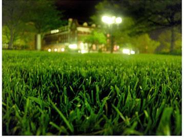Johnson Lawn Services - Alexander City, AL 35010 - (256)794-5473 | ShowMeLocal.com