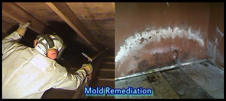 Tcwrc Mold Removal Deerfield Beach - Deerfield Beach, FL 33442 - (877)257-5776 | ShowMeLocal.com