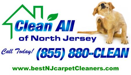 Clean All Of North Jersey - Butler, NJ 07405 - (973)850-6041   ShowMeLocal.com