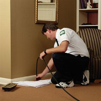 Extreme Carpet Cleaning - North Hills, CA 91343 - (818)921-6990 | ShowMeLocal.com