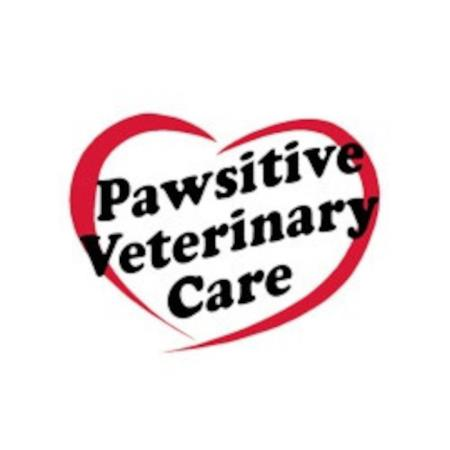 Pawsitive Veterinary Care